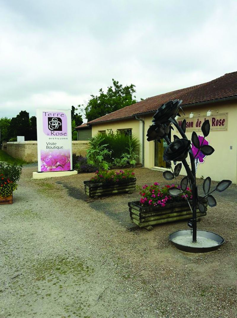 Terre de rose distillerie - 3
